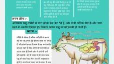 पशु ज्ञान